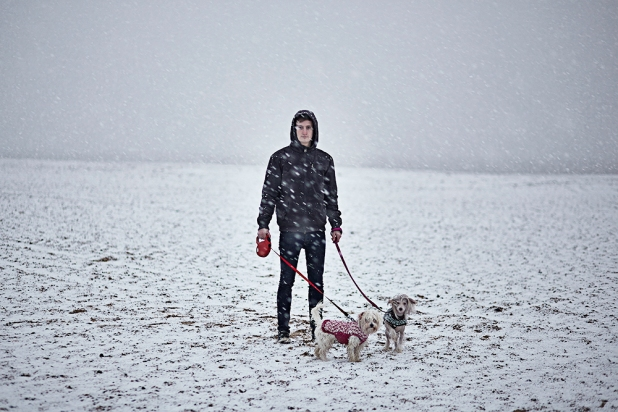 Kane in the snow with Gizmo & Luna